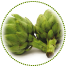 "<a href=""http://www.euromedweb.com/euromed/artichoke-dry-extract/"">Artichoke Dry Extract</a>"